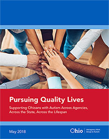 Pursuing Quality Lives PDF